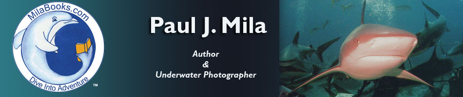 Paul Mila Books